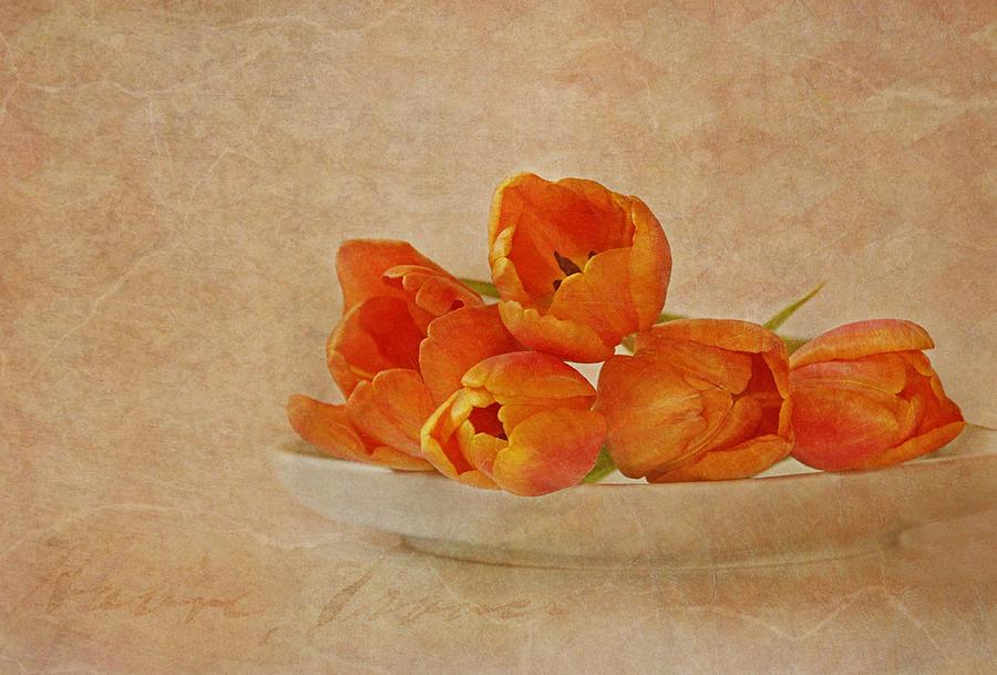 Spring Menu Photograph