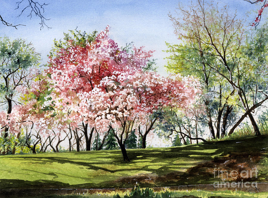 Flowers Painting - Spring Morning by Barbara Jewell