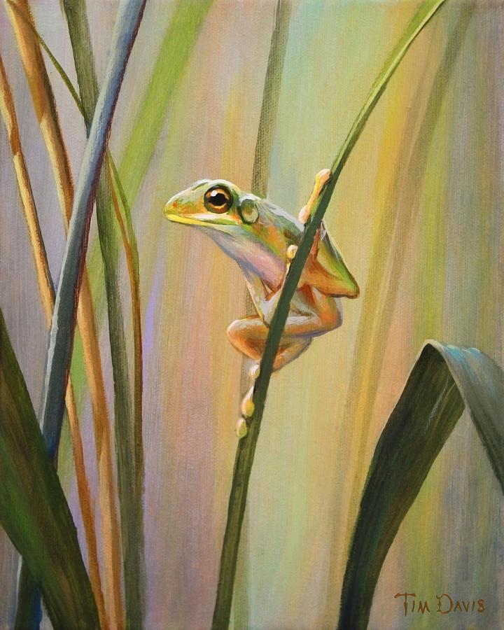 Spring Painting - Spring Peeper by Tim Davis