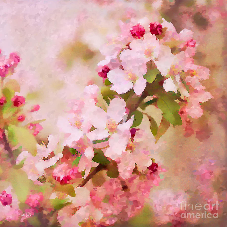 Abstract Photograph - Spring Pink by Betty LaRue