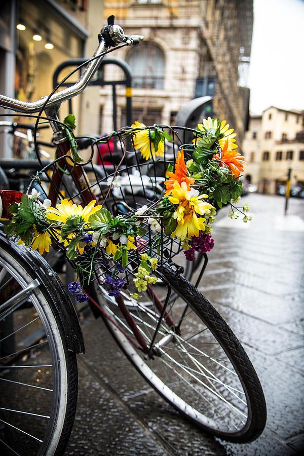 Avignon Photograph - Spring Rain Bicycle In Avignon by Maria Fossler