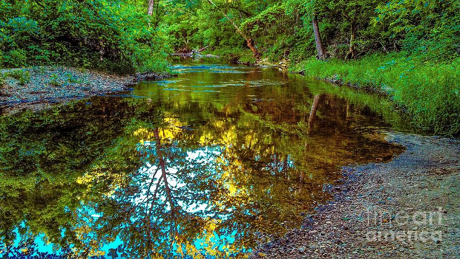 Landscape Photograph - Spring Reflection  by Peggy Franz