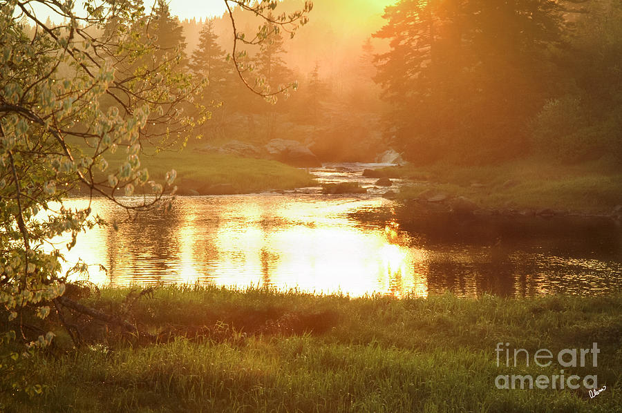 Spring Photograph - Spring Sunset by Alana Ranney