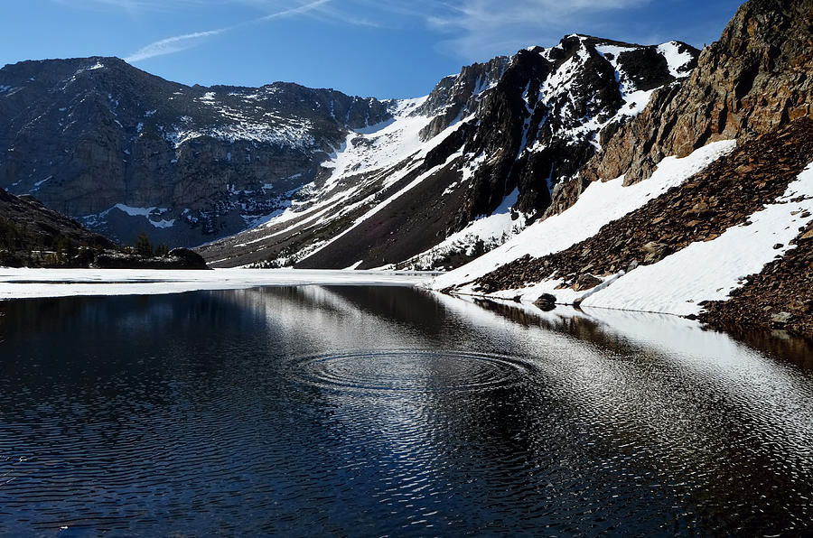 Spring Thaw Photograph by Catherine Reusch Daley