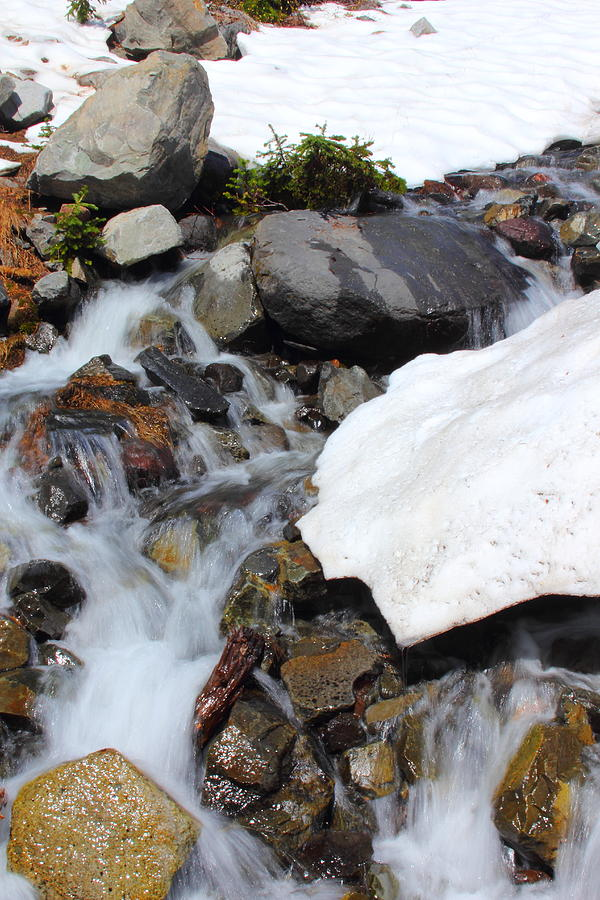 Spring Thaw Photograph by Rick Ulmer