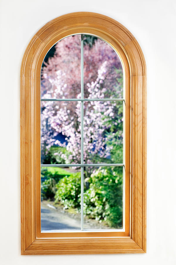 Window Photograph - Spring View by Jo Ann Snover