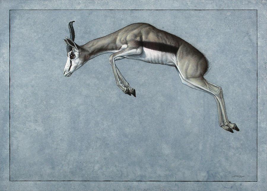 Springbok Painting - Springbok by James W Johnson
