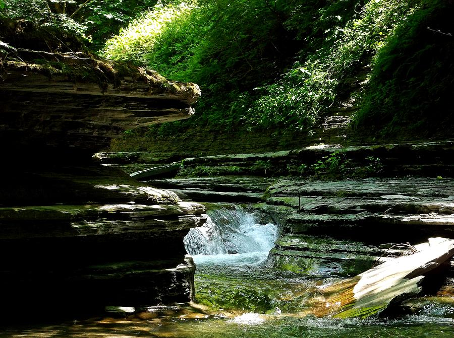 Rapids Photograph - Springs Of Living Water by Christian Mattison