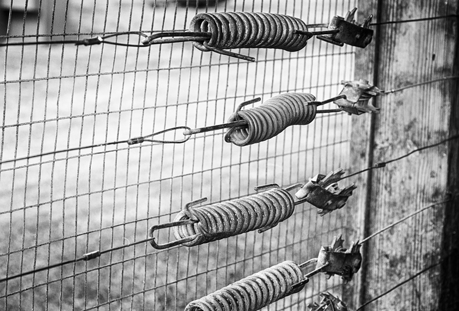 Aging Photograph - Springs On The Fence by Christi Kraft