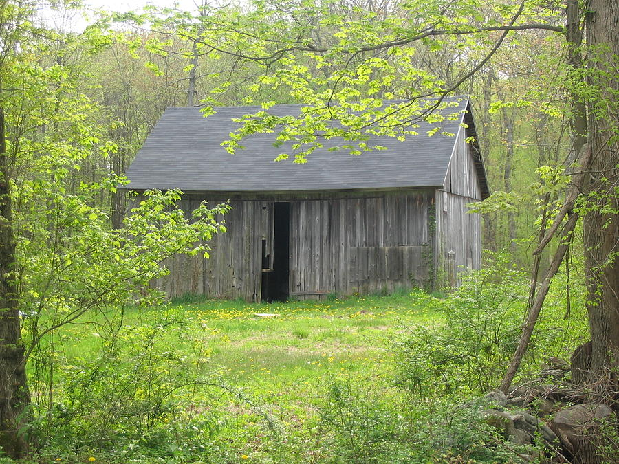 Barn Photograph - Springtime In New England by Marjorie Tietjen