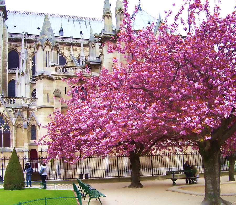 Springtime In Paris Photograph By Christiane Kingsley