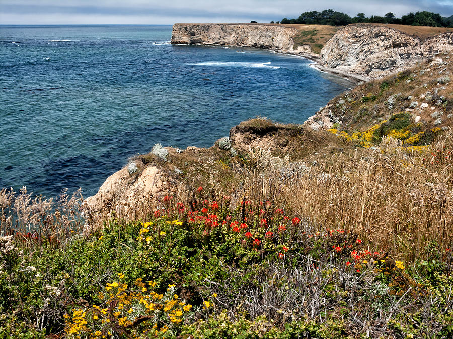 Ocean Photograph - Springtime On The California Coast by Kathleen Bishop