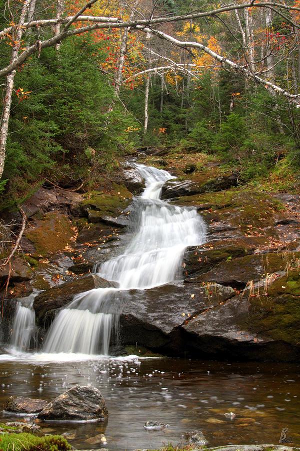 Water Photograph - Spur Brook Cascade by Brett Pelletier