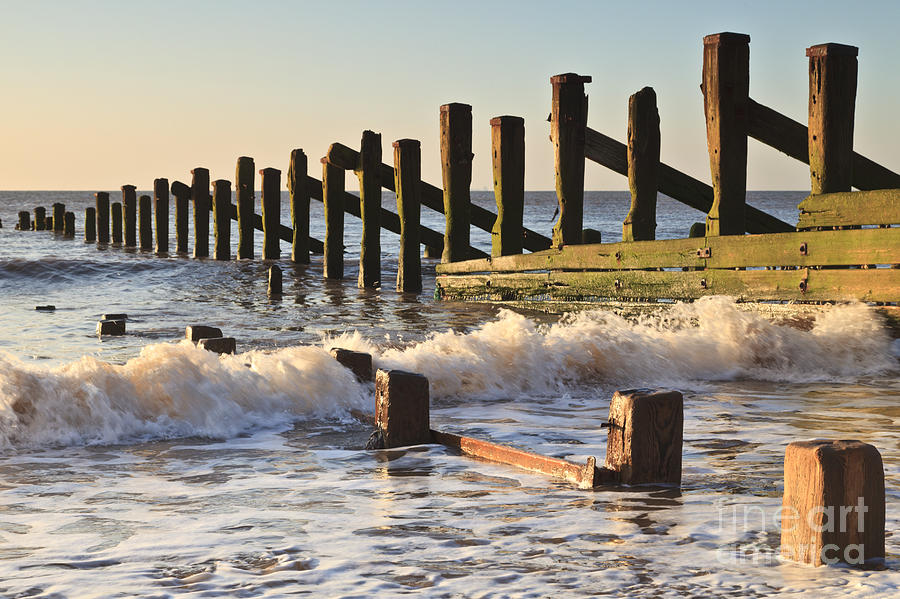 Coastline Photograph - Spurn Point Sea Defence Posts by Colin and Linda McKie