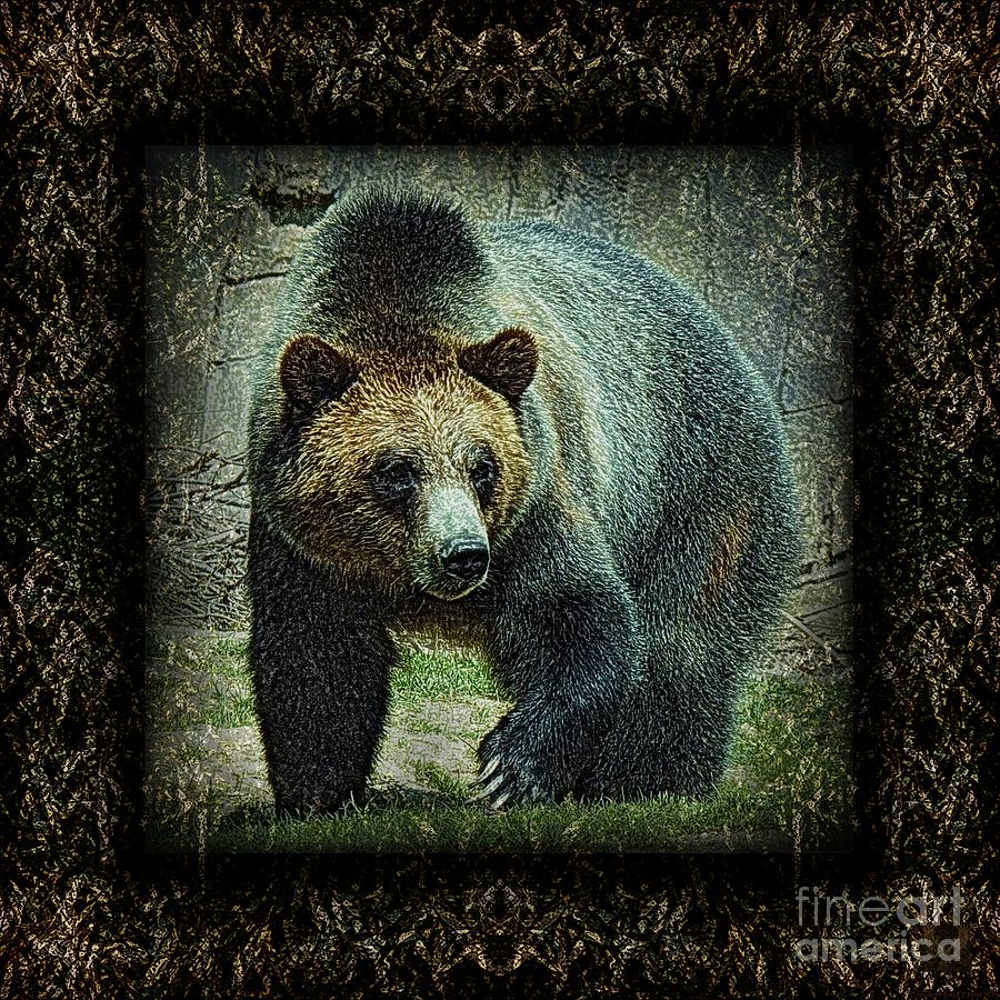 Bear Photograph - Sq Grizz 6k X 6k Grn Gold Wd2 by Dale Crum