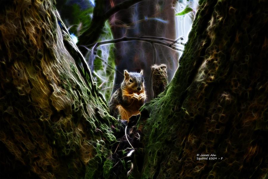 James Ahn Digital Art - Squirrel 8309 - F by James Ahn