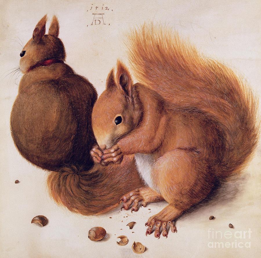 Les Ecureuils Painting - Squirrels by Albrecht Duerer
