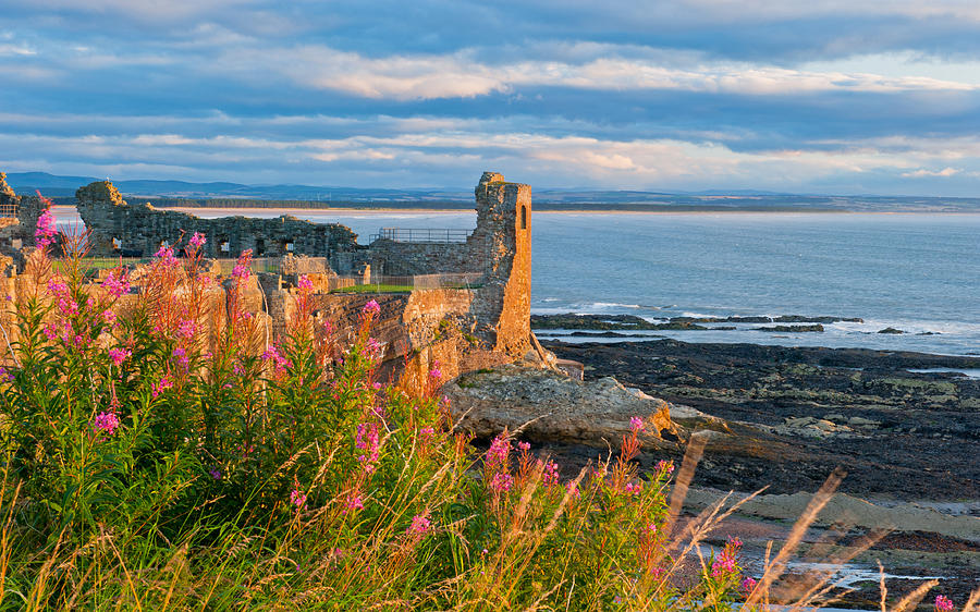 Fife Photograph - St Andrews Castle by David Ross