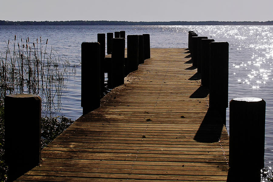St Photograph - St Johns River Florida - A Chain Of Lakes by Christine Till