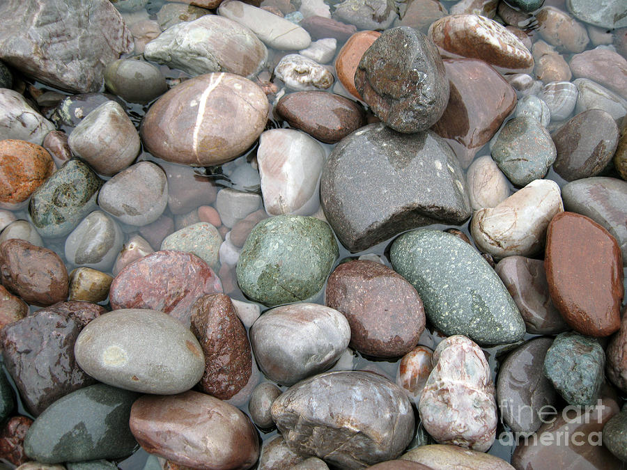 St johns river rocks photograph by brenda dorman for Large garden stones for sale