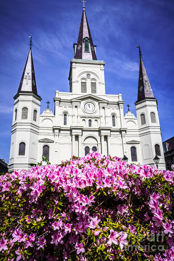 America Photograph - St. Louis Cathedral And Flowers In New Orleans by Paul Velgos