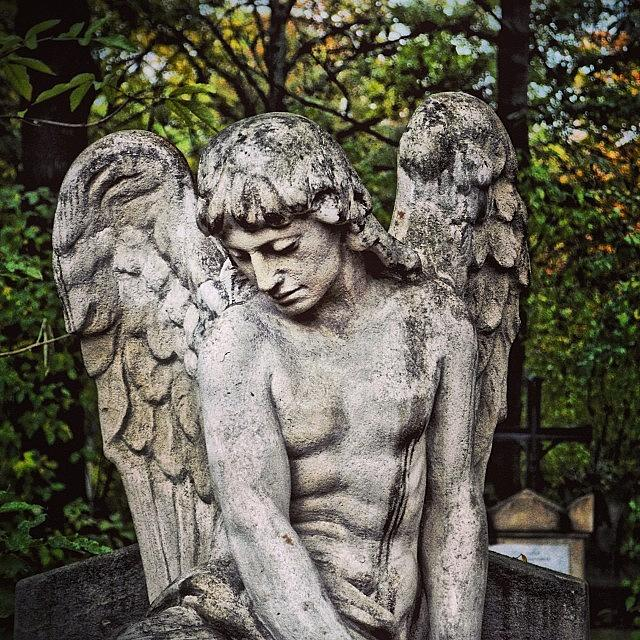 Male Photograph - St. Marx Cemetery In Vienna by Gia Marie Houck