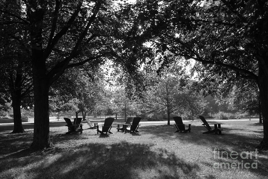American Photograph - St. Olaf College Adirondacks On The Quad by University Icons