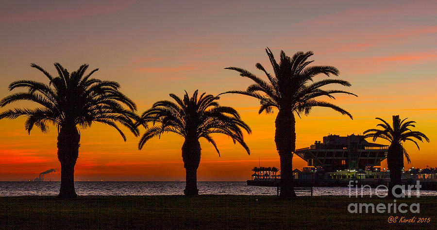 St Pete Pier Sunrise by Sue Karski
