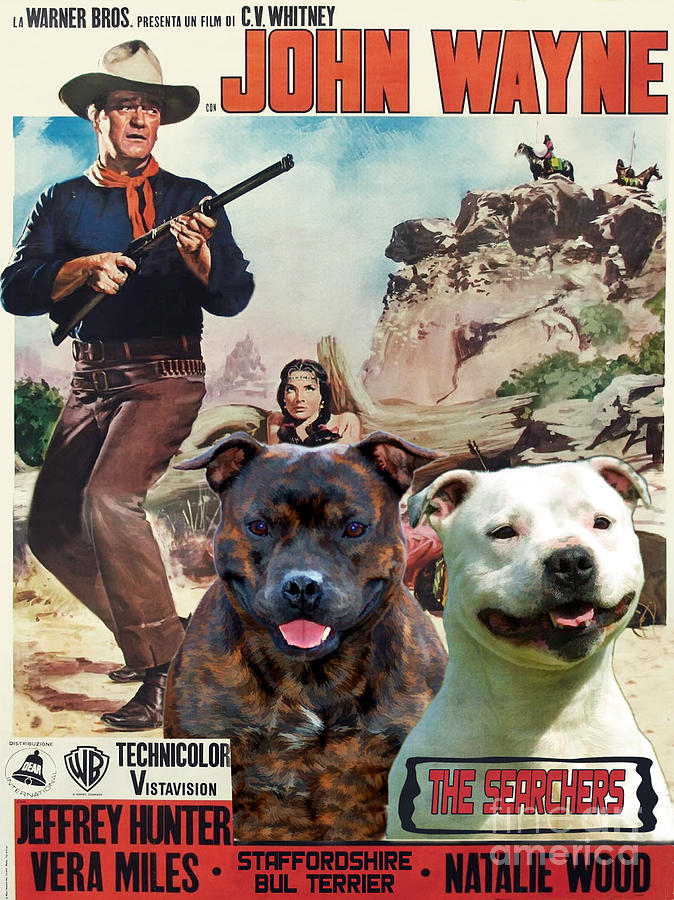 bull terrier movie related keywords suggestions for movies with bull terriers 2798
