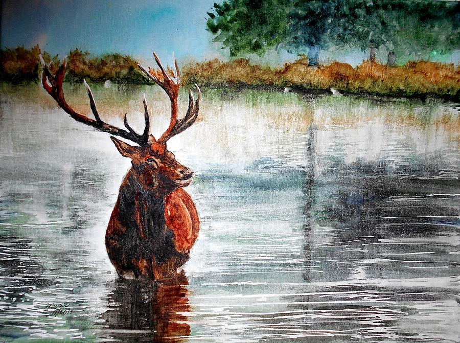 Stag Painting - Stag In The Pond by Maris Sherwood