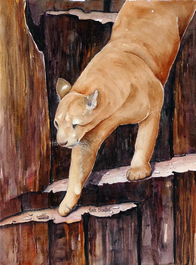 Mountain Lion Painting - Stair Master by Renee Chastant