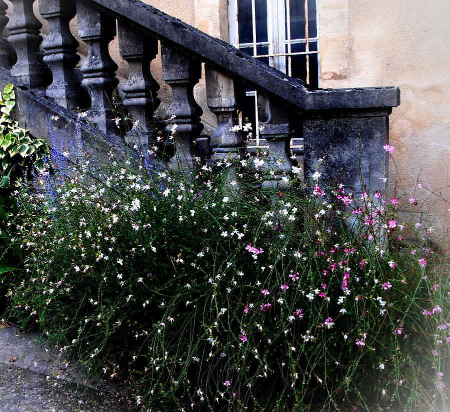 Sarlat Photograph - Stairway In Sarlat France by Jacqueline M Lewis