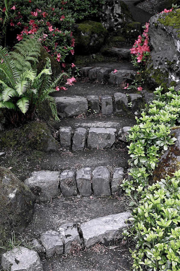Stairs Photograph - Stairway Path To Gardens by Athena Mckinzie