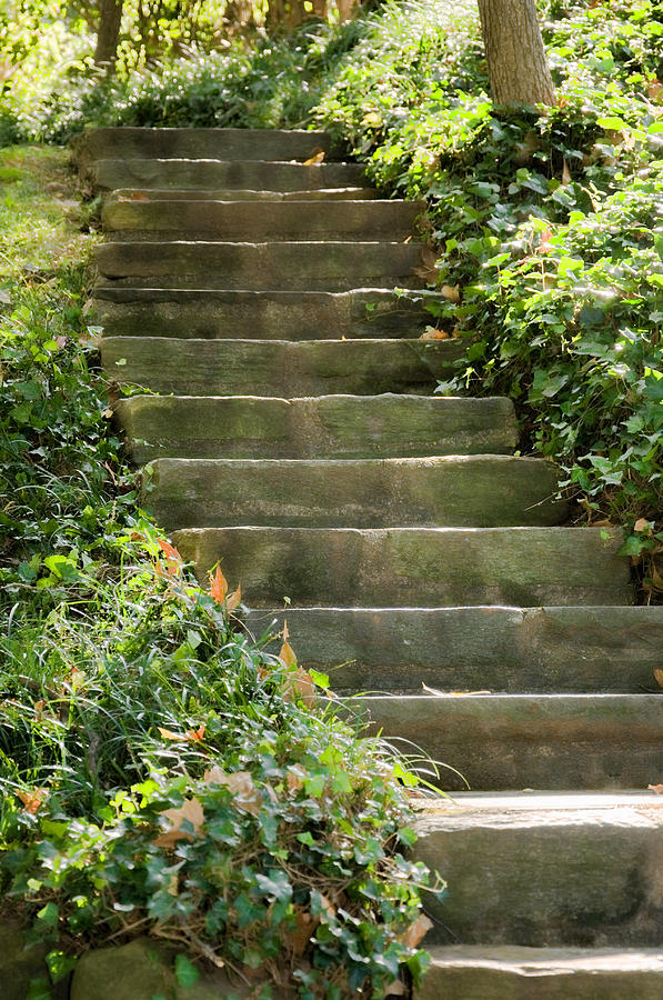 Stairs Photograph - Stairway To Heaven by Elin Mastrangelo
