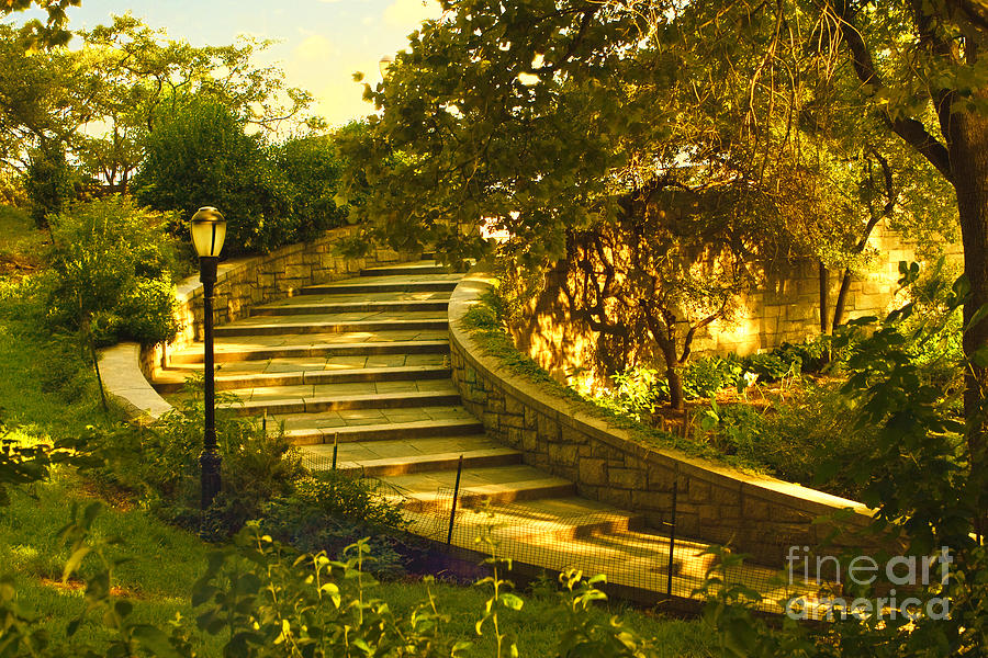 Park Photograph - Stairway To Nirvana by Madeline Ellis