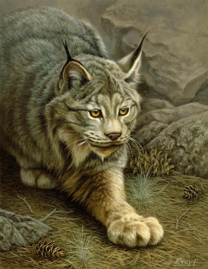 Wildlife Painting - Stalking Lynx by Paul Krapf