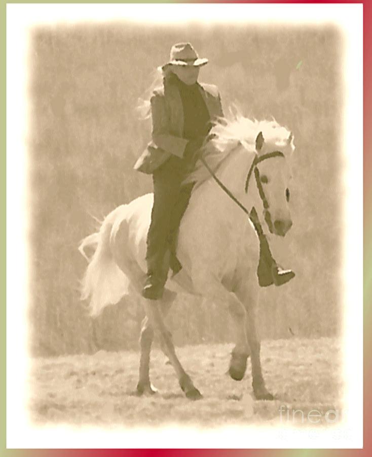 Horse Photograph - Stallion Strides by Patricia Keller