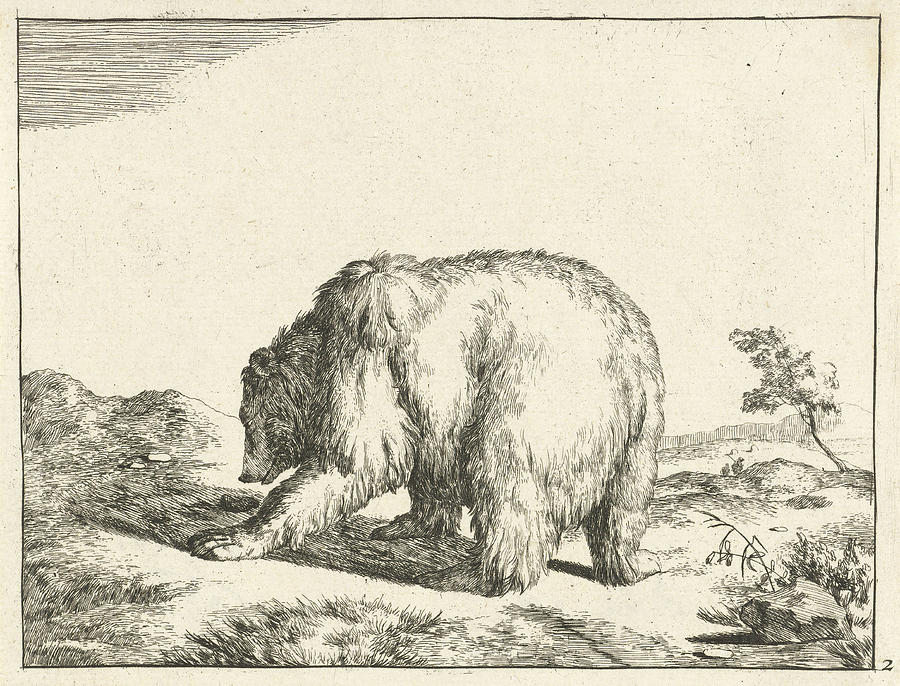 standing bear seen from behind marcus de bye drawing by marcus de