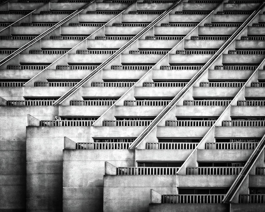 Repetition Photograph - Standing Out by Gary E. Karcz