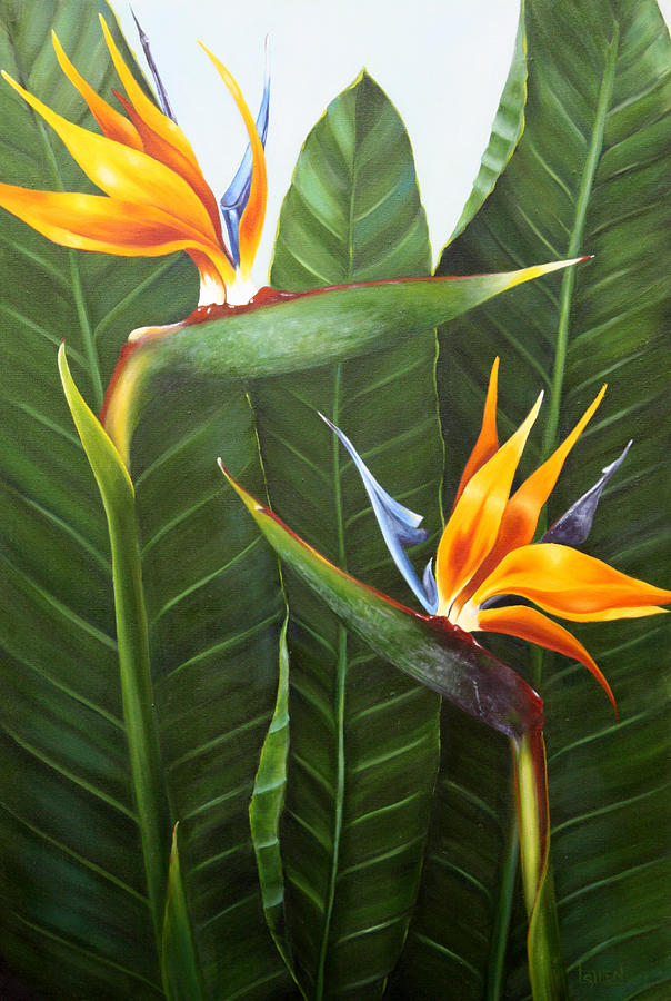 Strelitzia Painting - Standing Room Only by Lorraine Ulen