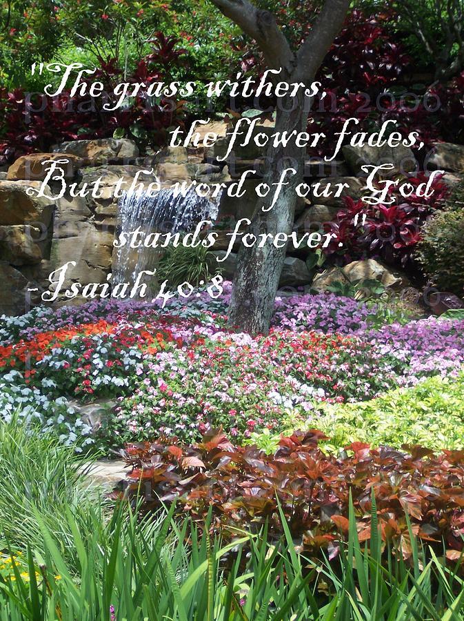 Garden Photograph - Stands Forever by Pharris Art