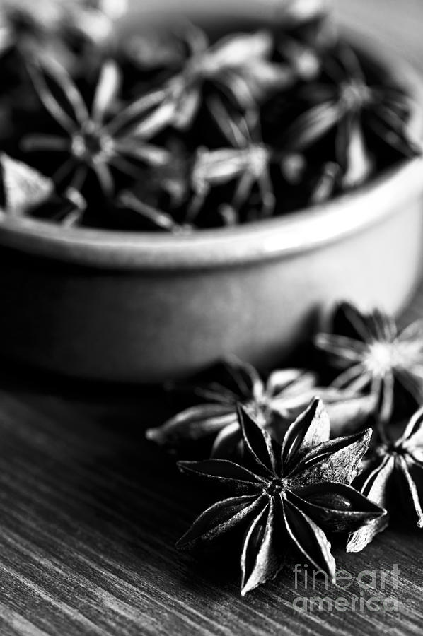 Anne Photograph - Star Anise Dish by Anne Gilbert