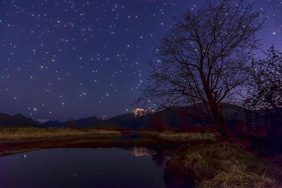 Astronomy Photograph - Star Light Star Bright by James Wheeler