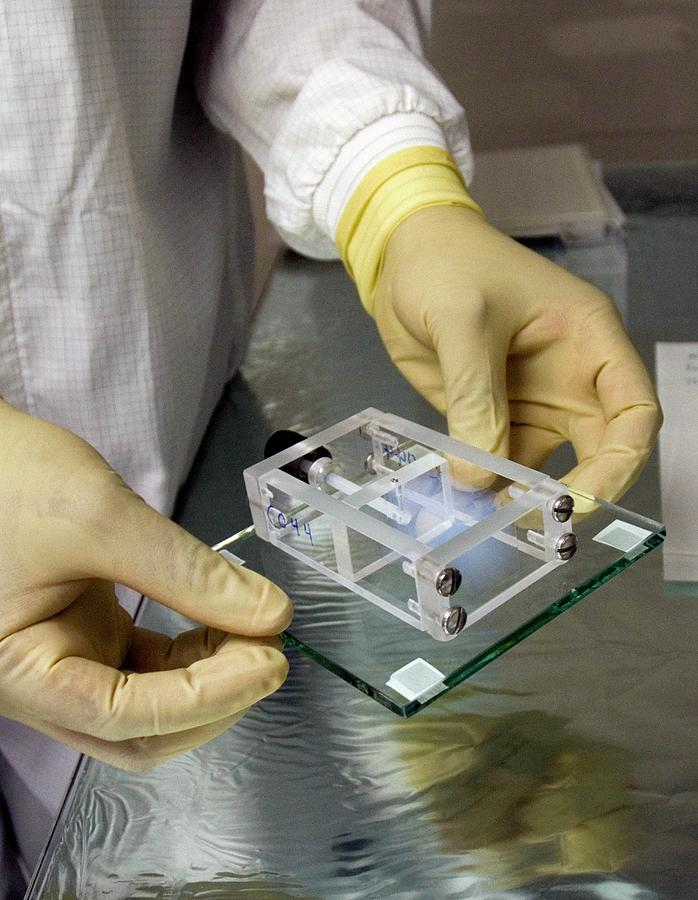 Stardust Mission Aerogel Sample Photograph by Nasa/ames