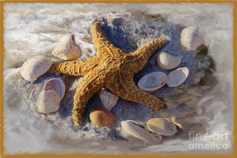 Gold Photograph - Starfish And Seashells by Richard Nickson