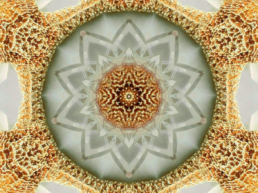 Starfish Crystal Mandala by Diane Lynn Hix