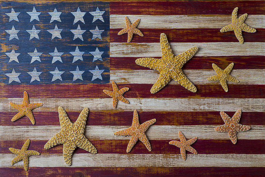 American Photograph - Starfish On American Flag by Garry Gay