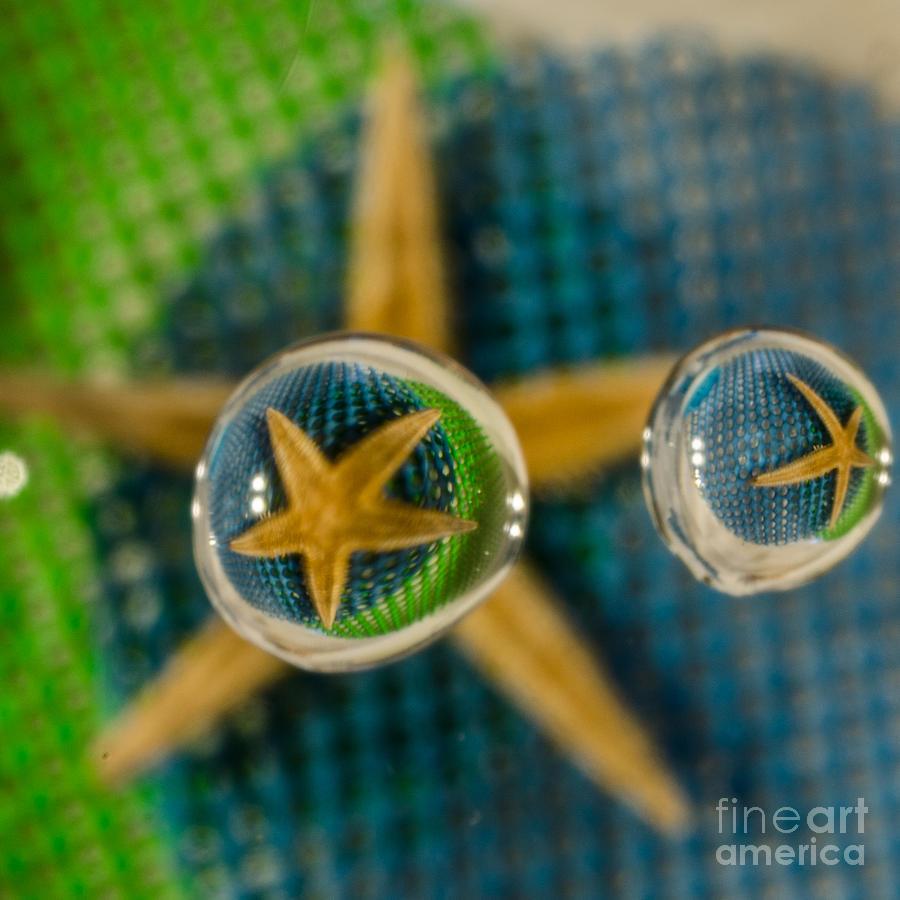 Starfish Refraction Photograph