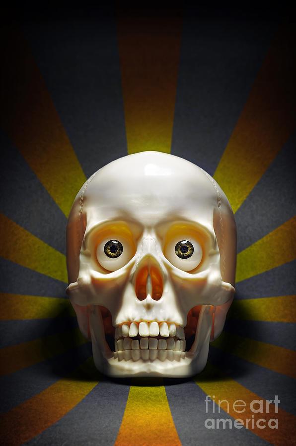 Anatomy Photograph - Staring Skull by Carlos Caetano