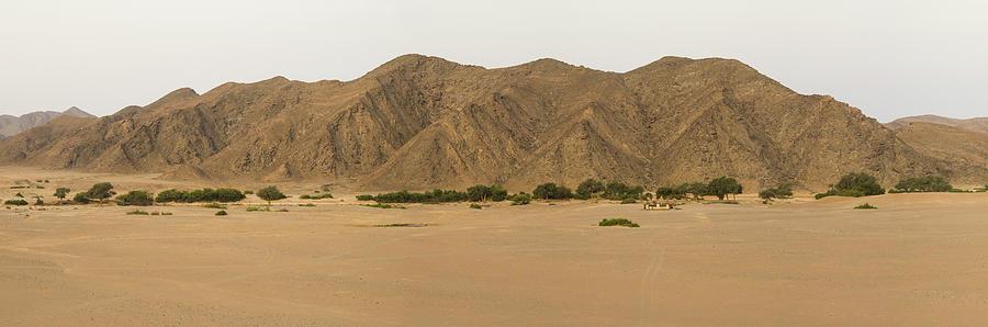 Color Image Photograph - Stark Landscape, Hoanib, Skeleton Coast by Panoramic Images